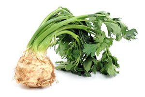Beneficial Food - Celeriac Vegetable Image
