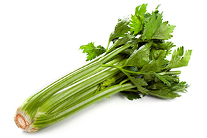 Beneficial Food - Celery Vegetable Image