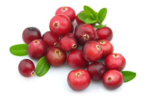 Beneficial Food - Cranberry Fruit Image