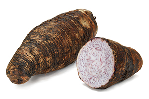 Beneficial Food - Taro Vegetable Image