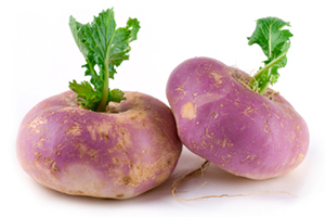 Beneficial Food - Turnip Vegetable Image
